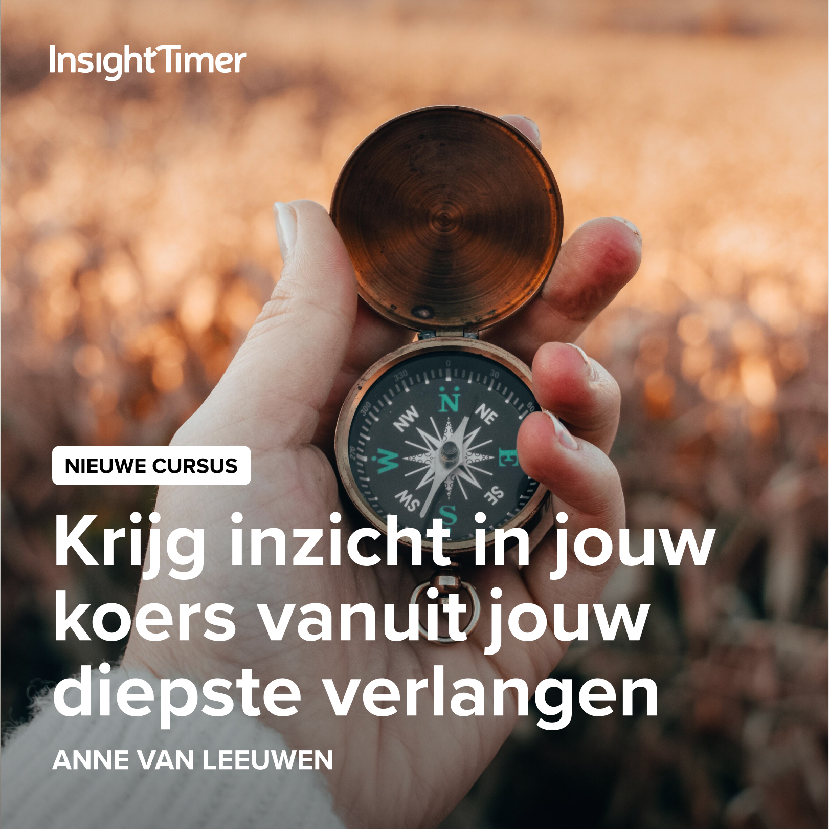 Insight Timer cursus